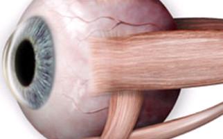 Αντιμετώπιση οφθαλμολογικών παθήσεων στο Aktis