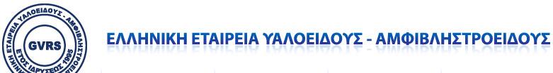 ελληνική εταιρεία υαλοειδούς αμφιβληστροειδούς